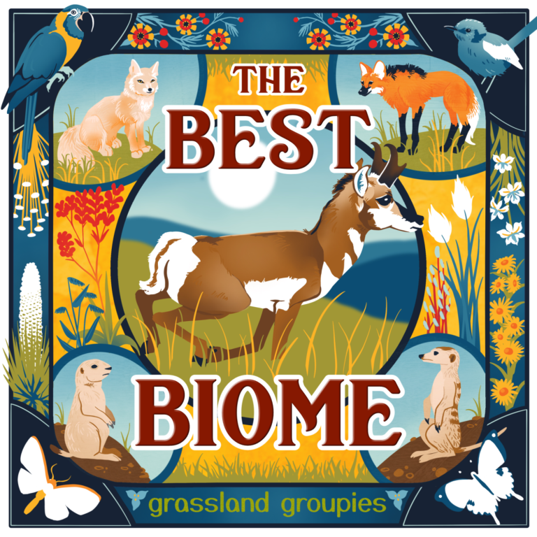 The Best Biome