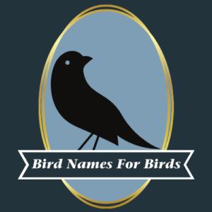 logo for Bird Names for Birds